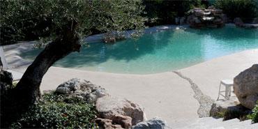 bio-design-pool